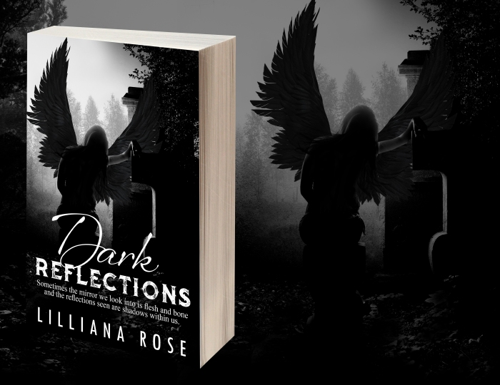 1 Dark Reflections 3D Image of Book Cover.jpg